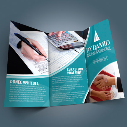 large-flyer_brochure-2
